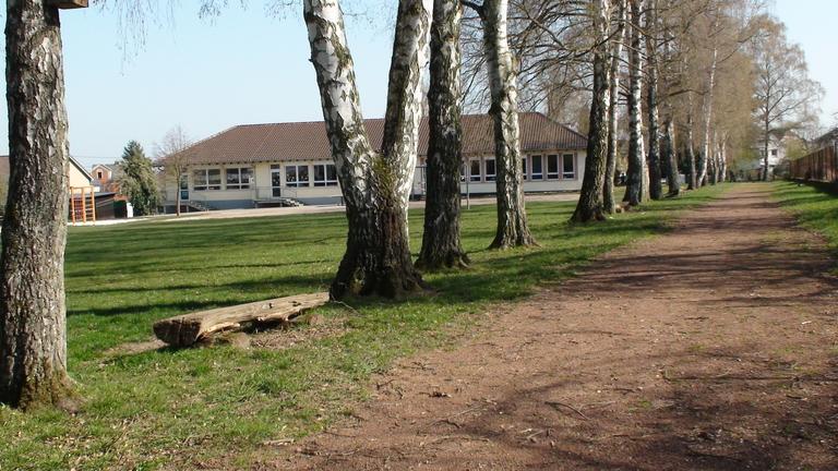 Schule mit Bäumen